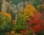 Autunm colors and Multnomah Falls     