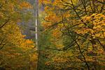 Latourell Falls,Oregon