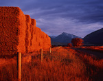 Bales and sunset