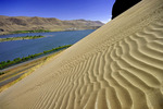 Sand dunes along the Columbia River