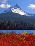 Mt. Washington from Big Lake with huckleberry