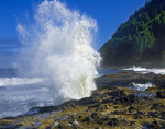 Spouting waves at Cape Perpetua