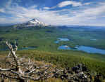 Mt. Jefferson and the Olallie Lake Natural Area from Olallie Butte