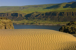 Columbia River with sand dunes and freight train