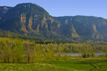 Columbia River and Yeon Mountain from Beacon Rock State Park