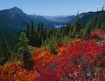 Dewey Lake in Mt. Rainier National Park