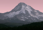 North Face Mt. Hood at sunset