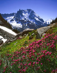 Heather and north face of Mt. Shuksan