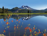 Sparks Lake and South Sister with shooting stars