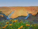Entrenched meanders of the John Day River