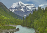 Robson River and Mt. Robson