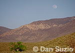 Full moon over Wildrose Canyon, Death Valley National Park