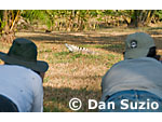 Photographers Patricia Prettie (left) and Yamil Saenz approach a black spiny-tailed iguana, Ctenosaura similis, on the grounds of Punta Leona Hotel and Resort, Costa Rica