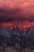 711700239v dawn light turns the eastern sierras and storm clouds alpenglow pink in the alabama hills blm lands in california. extensive coverage of numerous north american parks and other geographic locations.