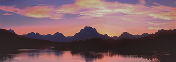 937000007 panoramic view of the teton range backlit by the setting sun at oxbow bend of the snake river in grand tetons national park wyoming. extensive coverage of a wide range of insect and other wildlife species, all identified by latin name.