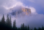 762609331 el capitan the massive granite monolith in yosemite valley sits shrouded in low lying clouds during a clearing storm in yosemite national park california. Extensive coverage of numerous North American national and state parks and other geographic locations.
