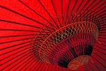 Japanese tea ceremony umbrella