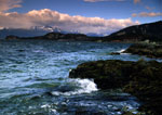 Beagle Channel's rocky shore