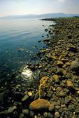 Sea of Galilee western shore