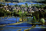 Yunnan's Yuanyang area village surrounded by rice paddies