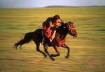 Mongolian rider on grassland at Naadam Festival near Hohhot