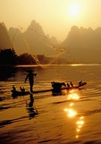 Li River fisherman tossing net near Yangshuo (Guilin area)