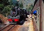 Outeniqua Tjoe Choo steam locomotive transports tourists between George and Knysna on the Garden Route