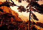 Huangshan (Yellow Mountain) pines and peaks