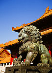 Beijing's Forbidden City imperial lion guarding Hall of Supreme Harmony in the Imperial Palace Museum