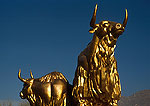 Lhasa's golden yaks sculpture in central city