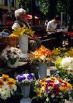 Kaunas pedestrian mall flower seller