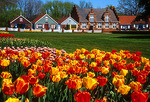 Holland, Michigan's Windmill Island during annual Tuliptime Festival