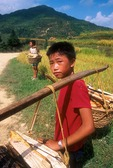 Teenagers carrying firewood along road near Kaili