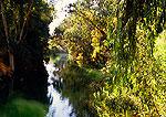 Jordan River near Sea of Galilee