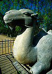 Beijing's Ming Tombs Spirit Way (Shen Dao) carved stone camel
