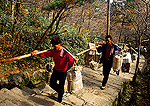 Porters at Huangshan (Yellow Mountain) carrying supplies up the stone steps to hotels on top of mountain