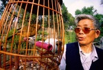 Yangzhou elderly retiree in park in early morning whistling for his caged pet bird