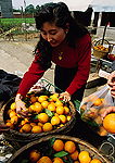 Sichuan oranges on sale at stand in countryside near Chengdu