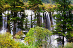 Nuorilang Falls in the Jiuzhaigou (Nine Village Valley) natural scenic area in autumn, a World Biosphere Reserve