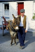 Bunratty Castle and Folk Park, man with donkey and cart