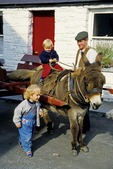 Bunratty, County Clare, Ireland: Donkey cart with kids at Bunratty Castle and Folk Park.