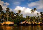 Kerala Backwaters houseboats (rice boats) anchored under palms