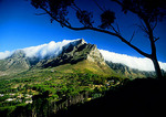 "Cape Town's Table Mountain with ""table cloth"" of clouds"
