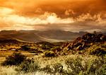 Groot Karoo's desert landscape after a storm near Graaff-Reinet