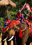 Bangkok's Samphran Elephant Ground & Zoo with elephant battle regalia demonstration