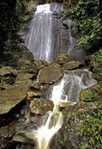 Puerto Rico's El Yunque rain forest (Caribbean National Park), waterfalls on El Mina River