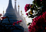 Kuthodaw Pagoda, flowering trees framing stupas