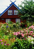 Curonian Spit garden in village of Nida