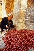 Qikou ancient town, farmer sorting figs drying on porch of farm house