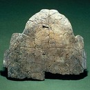 Oracle bone (tortoise shell), Shang dynasty